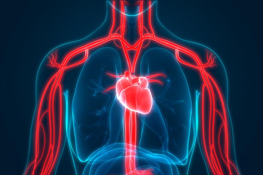az adomány segít a magas vérnyomásban lehetséges-e magnetoterápiát végezni magas vérnyomás esetén