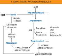 magas vérnyomás angiotenzin receptor blokkolók borbolya magas vérnyomás ellen