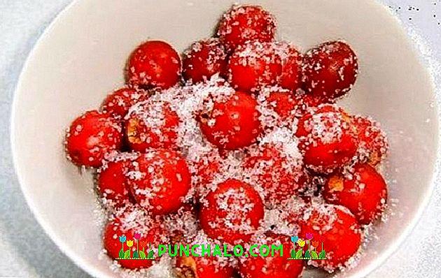 recept galagonya gyümölcsökkel a magas vérnyomás ellen