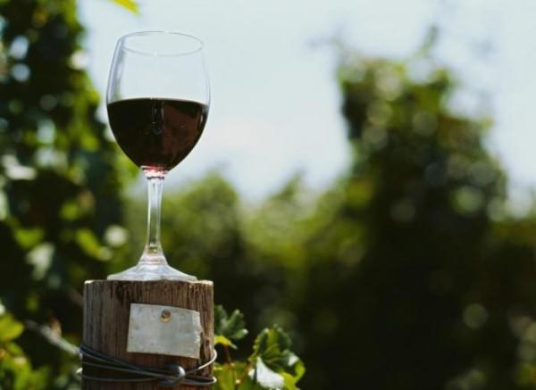 a vörösbor előnyei és ártalmai magas vérnyomás esetén