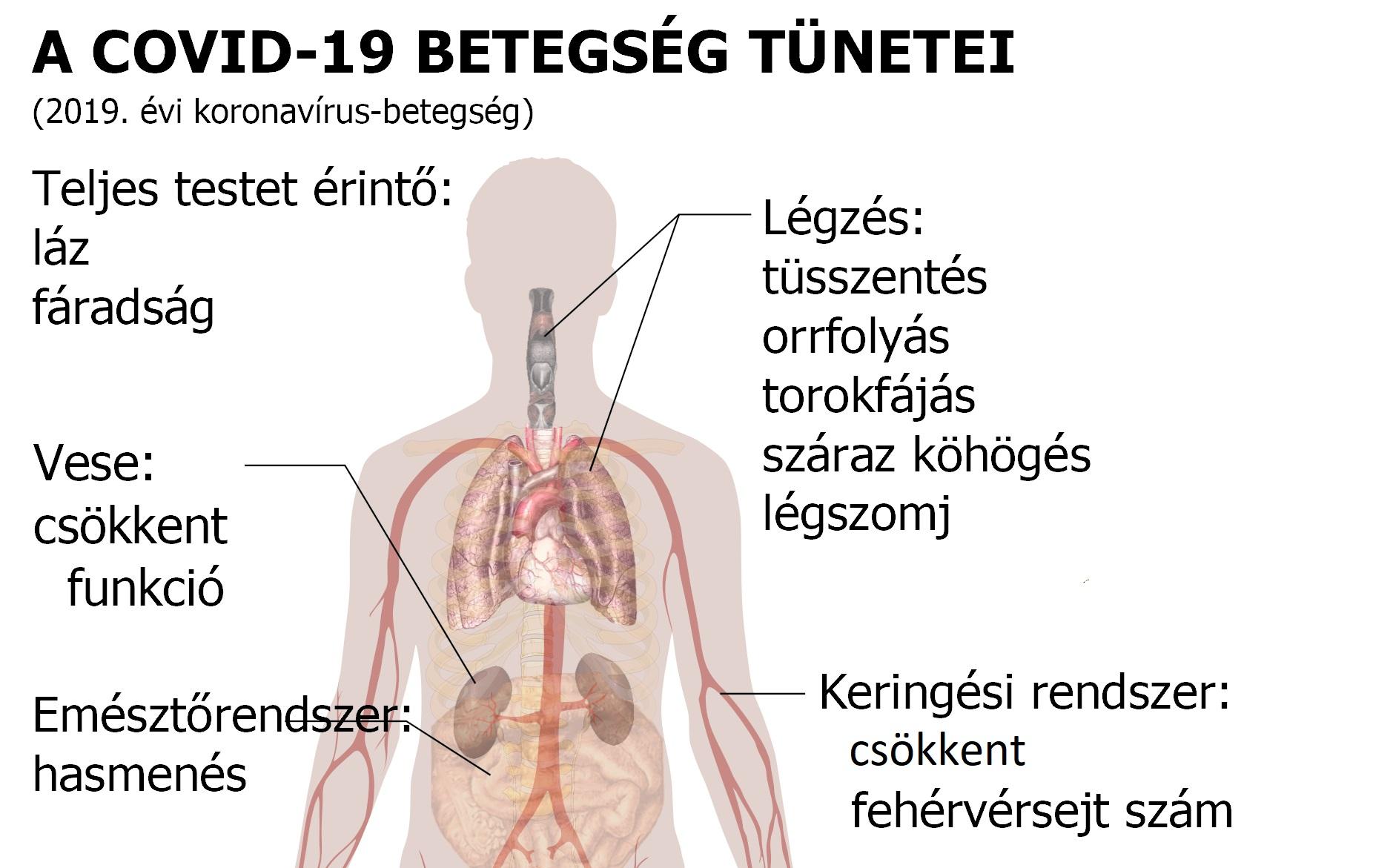 a magas vérnyomás alternatív kezelésének módszerei magas vérnyomás esetén hogyan kell kezelni a köhögést