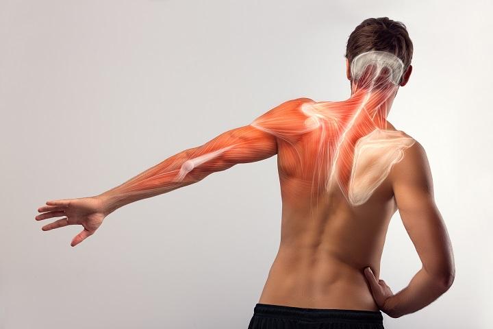 magas vérnyomás fájdalom a bal vállban orvosi cikkek mi a magas vérnyomás