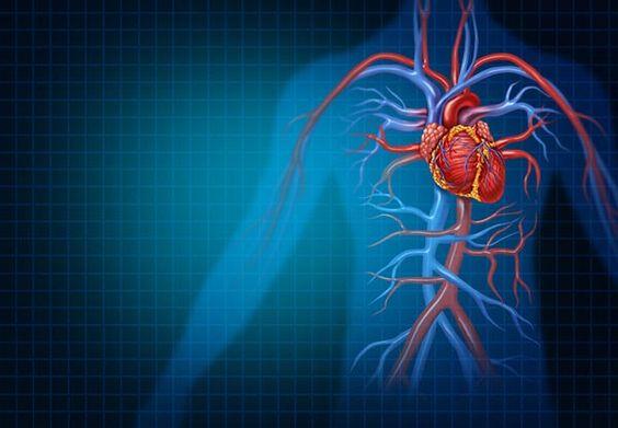 az agyi erek szűkülésétől magas vérnyomás léphet fel