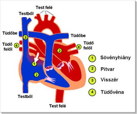 szenzáció magas vérnyomás lesznek gyógyszerek magas vérnyomás ellen