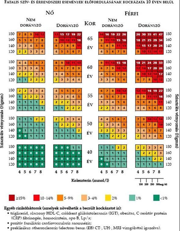 magas vérnyomás és magnerot