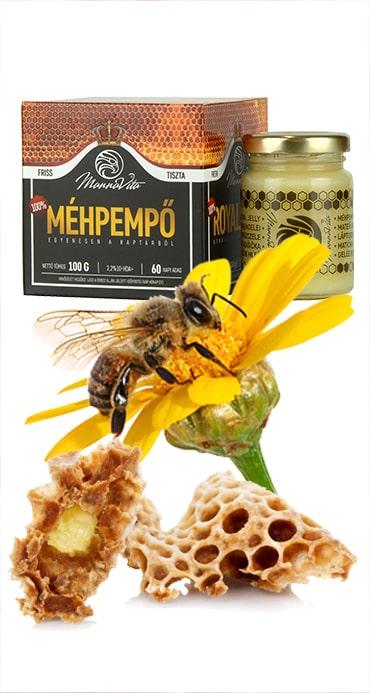 A méhpempő felhasználása és adagolása   Méhpempő Bolt