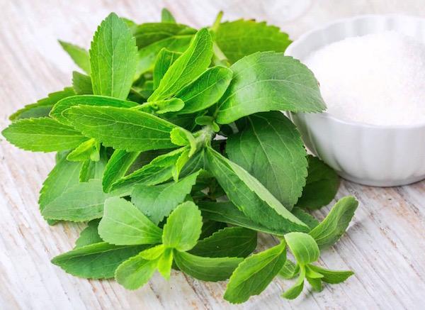stevia magas vérnyomás esetén