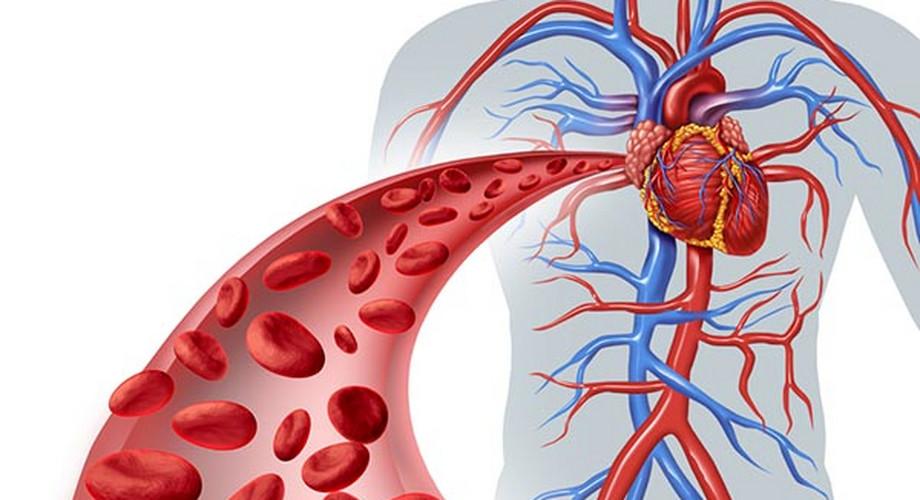 mit kell tennie magas vérnyomás-roham esetén kerékpározás magas vérnyomás miatt