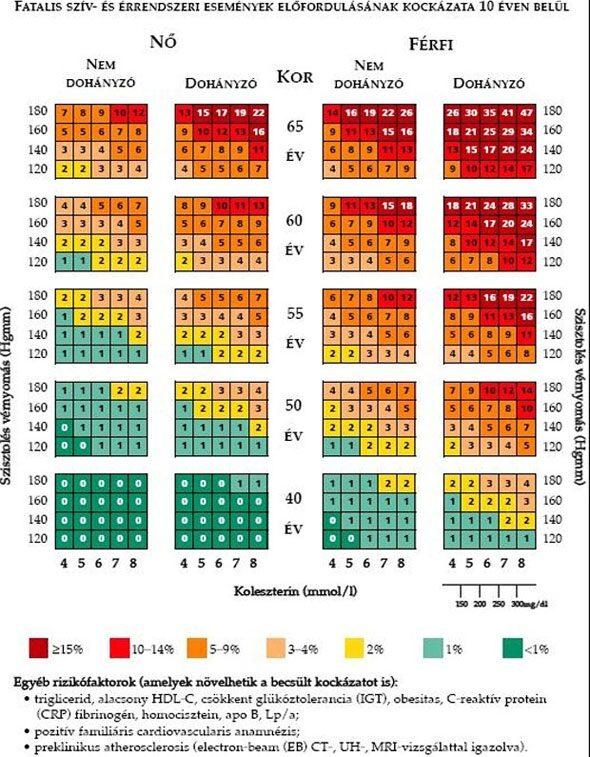 a magas vérnyomás mint a betegségek kockázati tényezője magas vérnyomás kezelésére 2