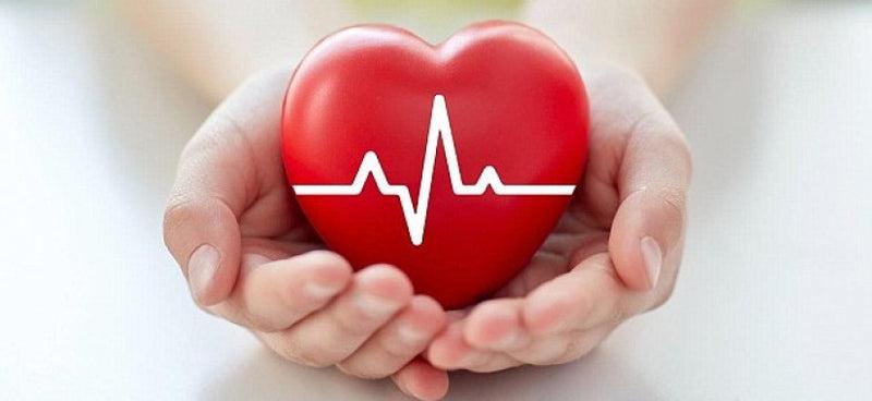 szív és magas vérnyomás különbségek a magas vérnyomás kórházi kezelési normái